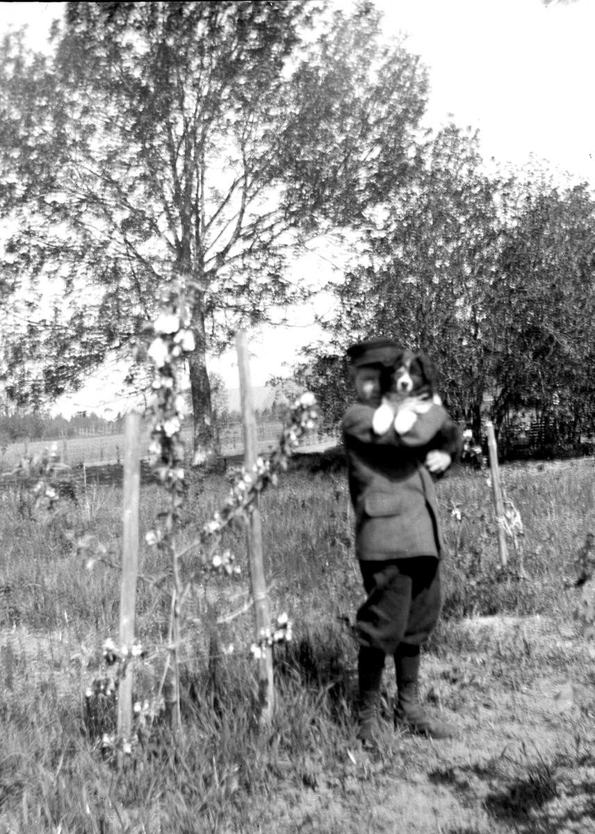 Portrett av gutt med hund, Kristofer G. Holm, sønn av presten i Hurum, Olaf A. Holm, gift med fotografens søster Louise. Gutten har lue, jakke, nikkers og snørestøvler. Han står i frukthage. Fra malerinne Juliane Fredrikke Langbergs (1856-1930) samling, tatt ca.1895-1910 med motivkrets slekt og venner samt steder tilknyttet samvær med disse.