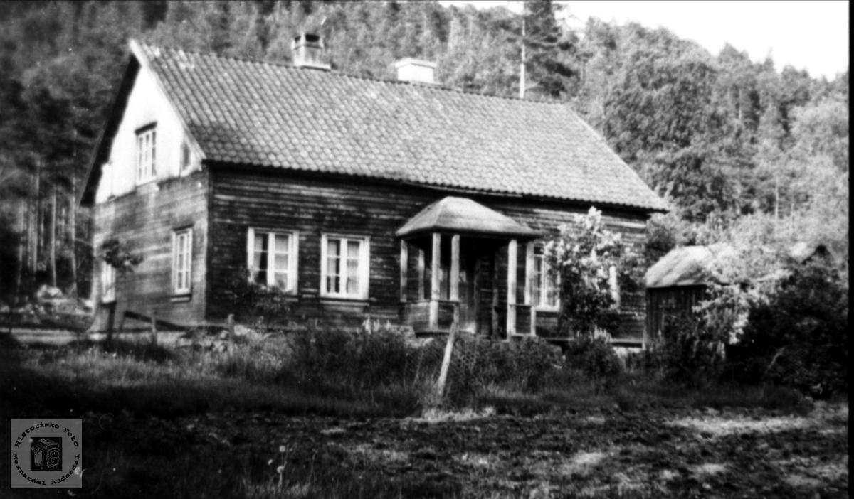 Hovedhus på Stedjan i Bjelland.