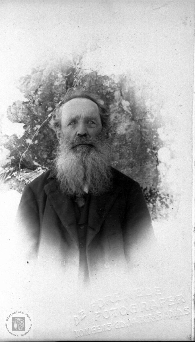 Portrett av Ola K. Sveinall, Laudal.
