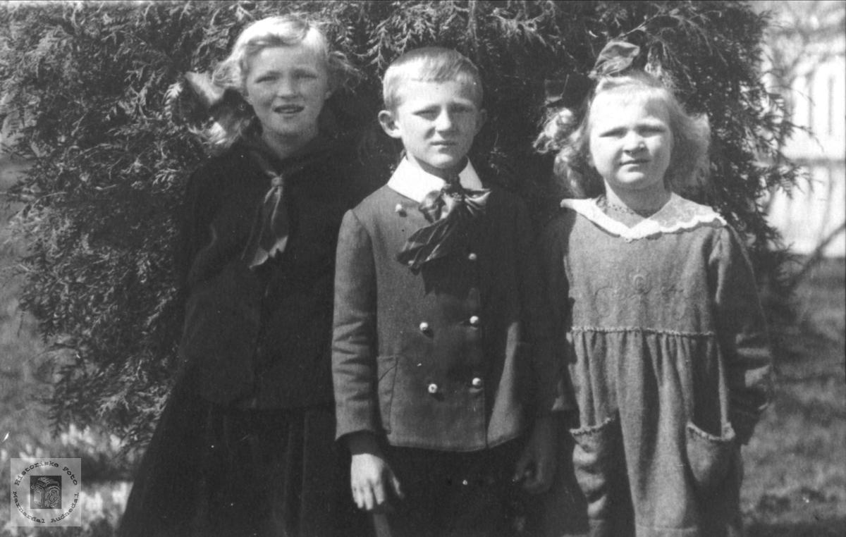 Søskenflokk.Sigrid og Åaae A. Øyslebø med bror Olav Asbjørnsen mellom seg.