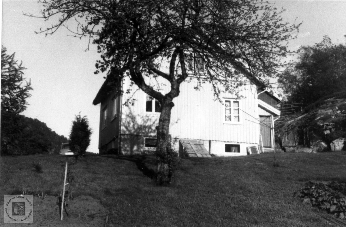Lunden på Usland.i Øyslebø.