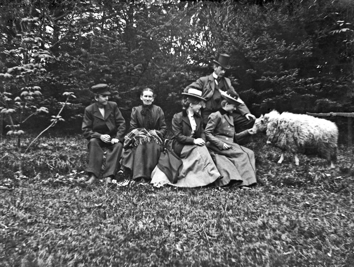 Landskap -Tre kvinner, to menn og en sau