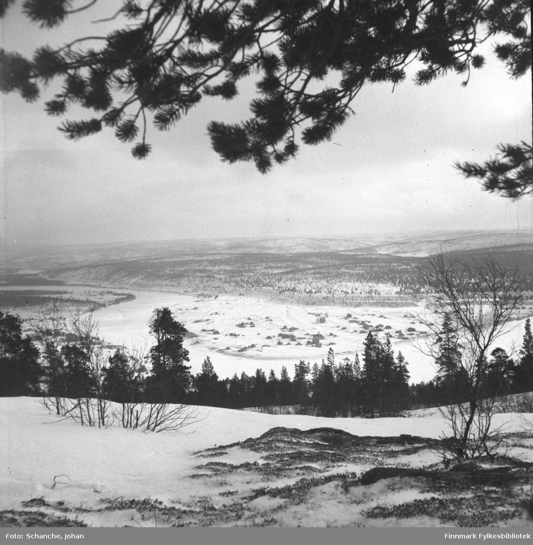 Oversiktsbilder over Karasjok tatt fra fjellet ned mot bygda i dalen. Fotografen har stått under en stor furu, furugrein henger over landskapet på bildet.