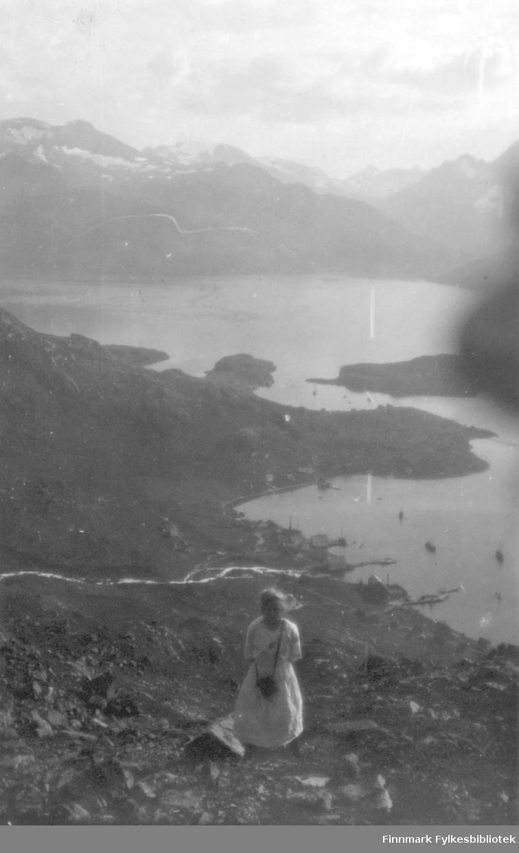 Utsikt fra fjellet over Bergsfjord