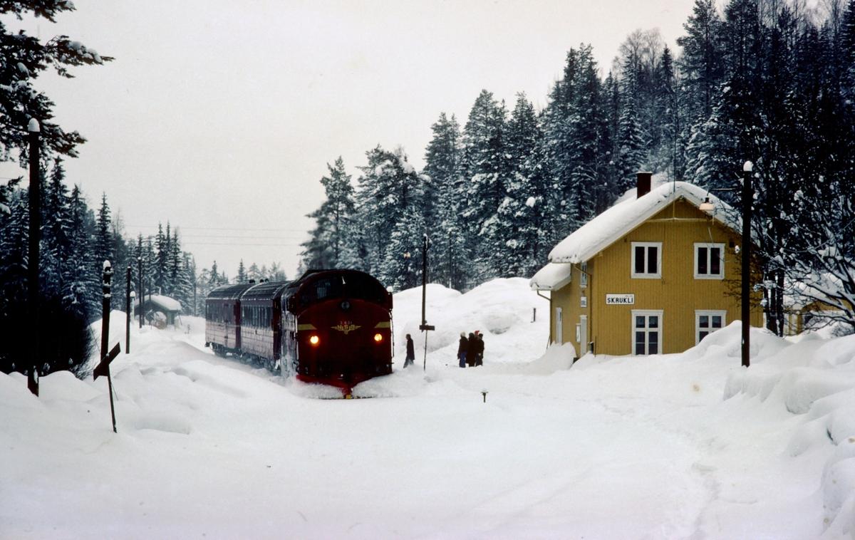 Persontog 284 Fagernes - Oslo Ø kjører inn på Skrukli stasjon.