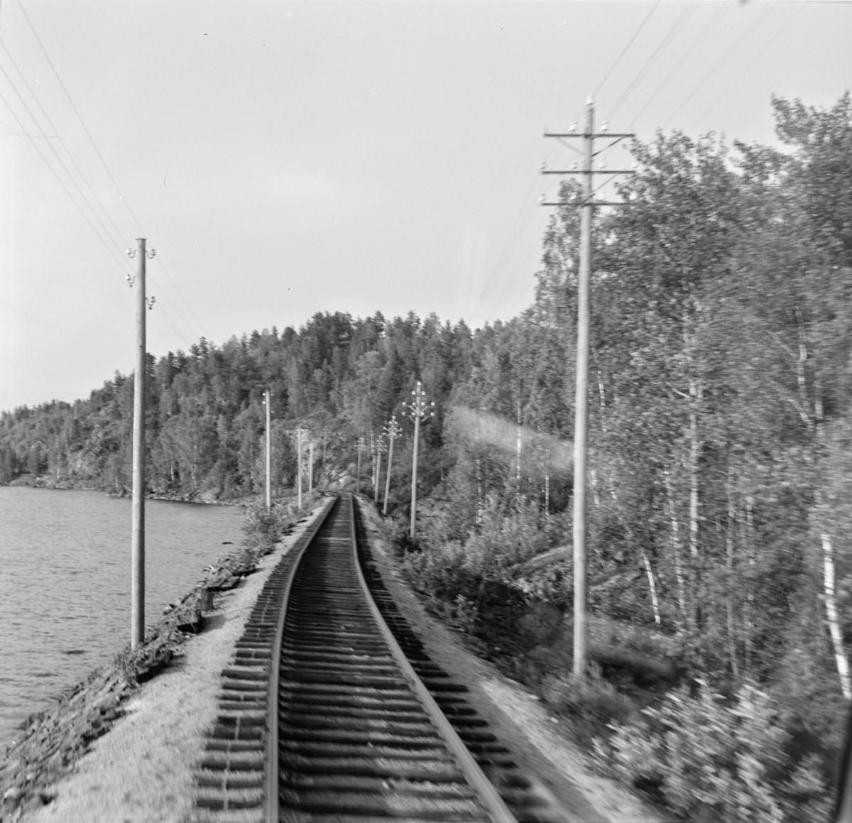 Parti langs Treungenbanen.