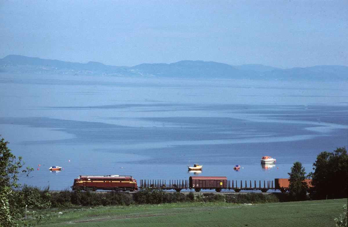 Godstog med NSB dieselelektrisk lokomotiv type Di 3 ved Vikhamar, med Trondheimsfjorden i bakgrunnen.