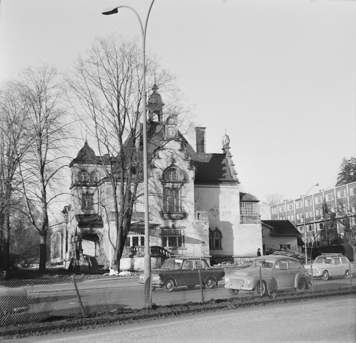 Villa vegeta på Maritim i Oslo
