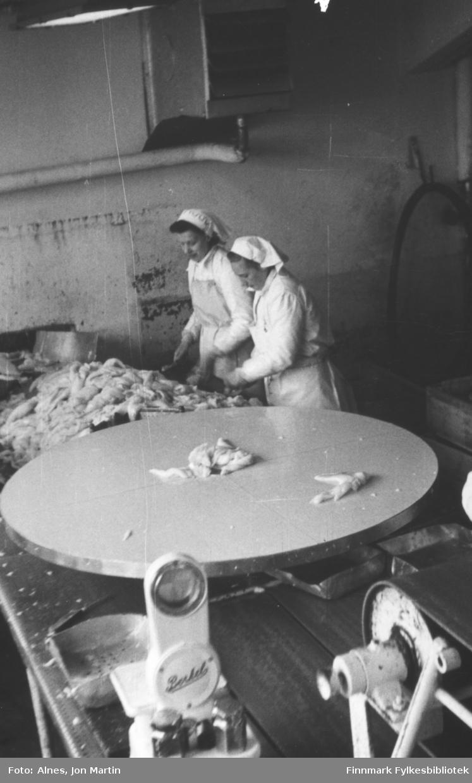 Filetpakkere ved fabrikken i Bergsfjord i 1953