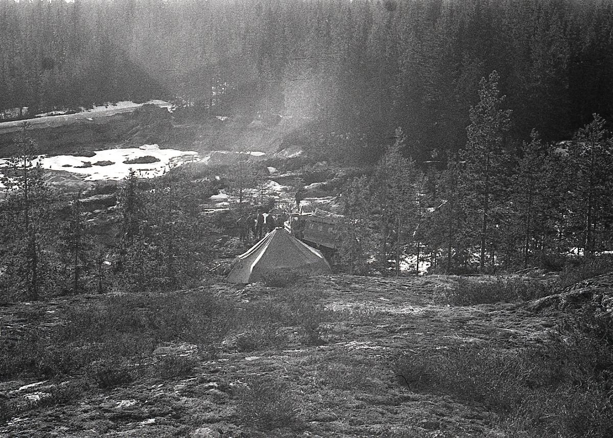 Tältläger i skogen, I21 Västernorrlands Regemente, Sollefteå.