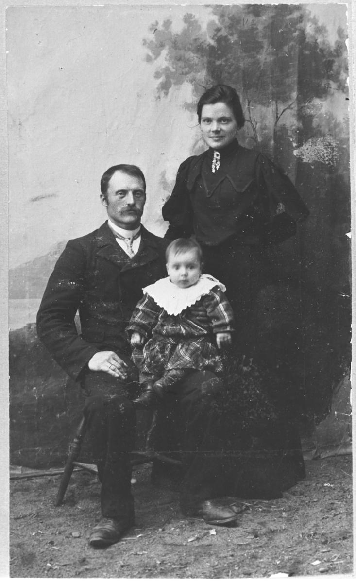 En fin familieportrett tatt ute ved en malt bakrunn med landskapsmotiv. Mannen som heter Smart (står skreven i albumet) sitter på en stol med et spedbarn i fanget. Kona hans står ved siden av dem kledd i en lang, mørk kjole. Barnet er trolig en liten jente kledd i en rutet kjole med en stor hvit krage.