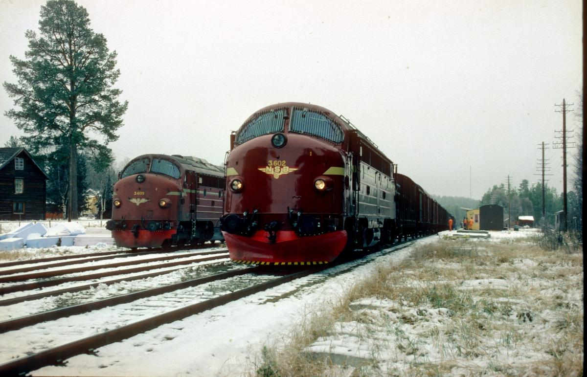 Telneset stasjon med godstog 5721 Hamar - Trondheim og arbeidstog.