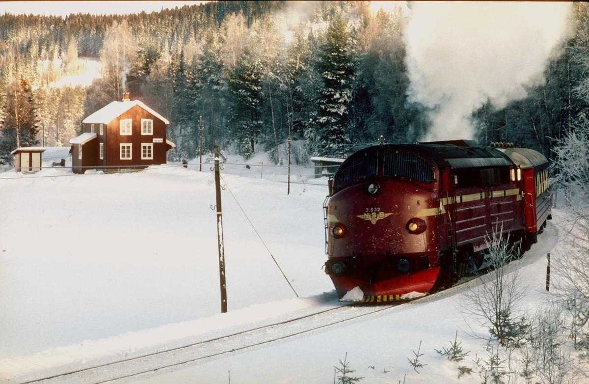 Persontog 281 Oslo - Fagernes kjører ut fra Trevatn stasjon en kald februardag med NSB dieselelektrisk lokomotiv Di 3 632.