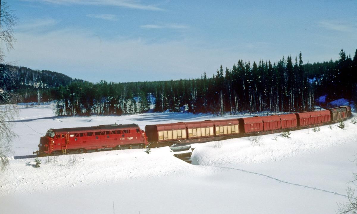 Godstog til Fagernes ved Trevatn.