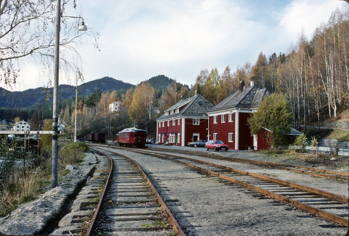 Rødberg stasjon med tog.