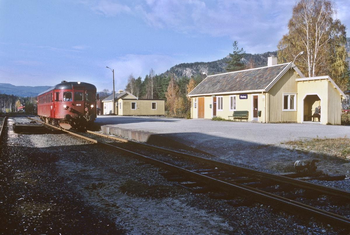 Flesberg stasjon, Numedal, med persontog til Kongsberg. NSB dieselmotorvogn BM 86K 15.