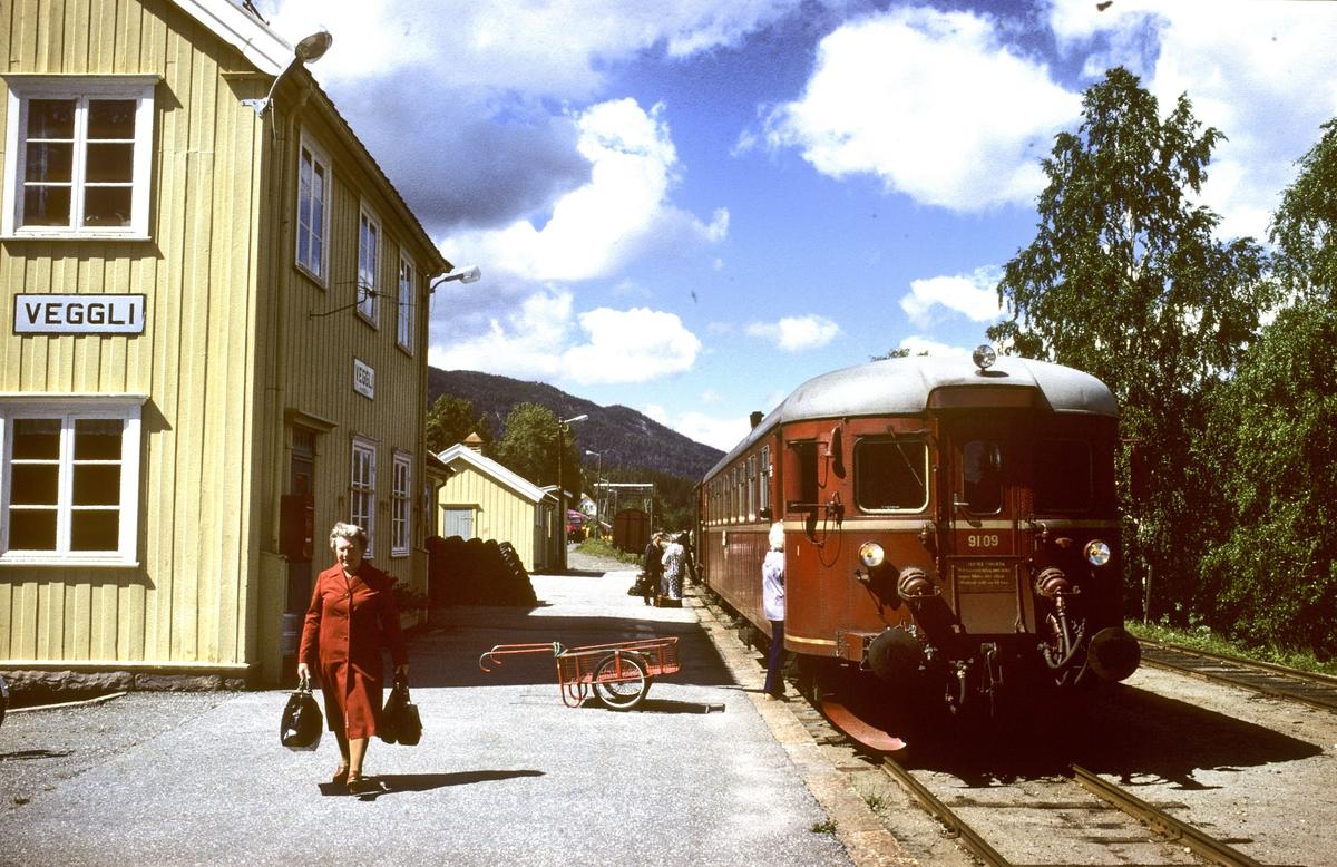 NSB persontog fra Rødberg til Kongsberg på Veggli stasjon.