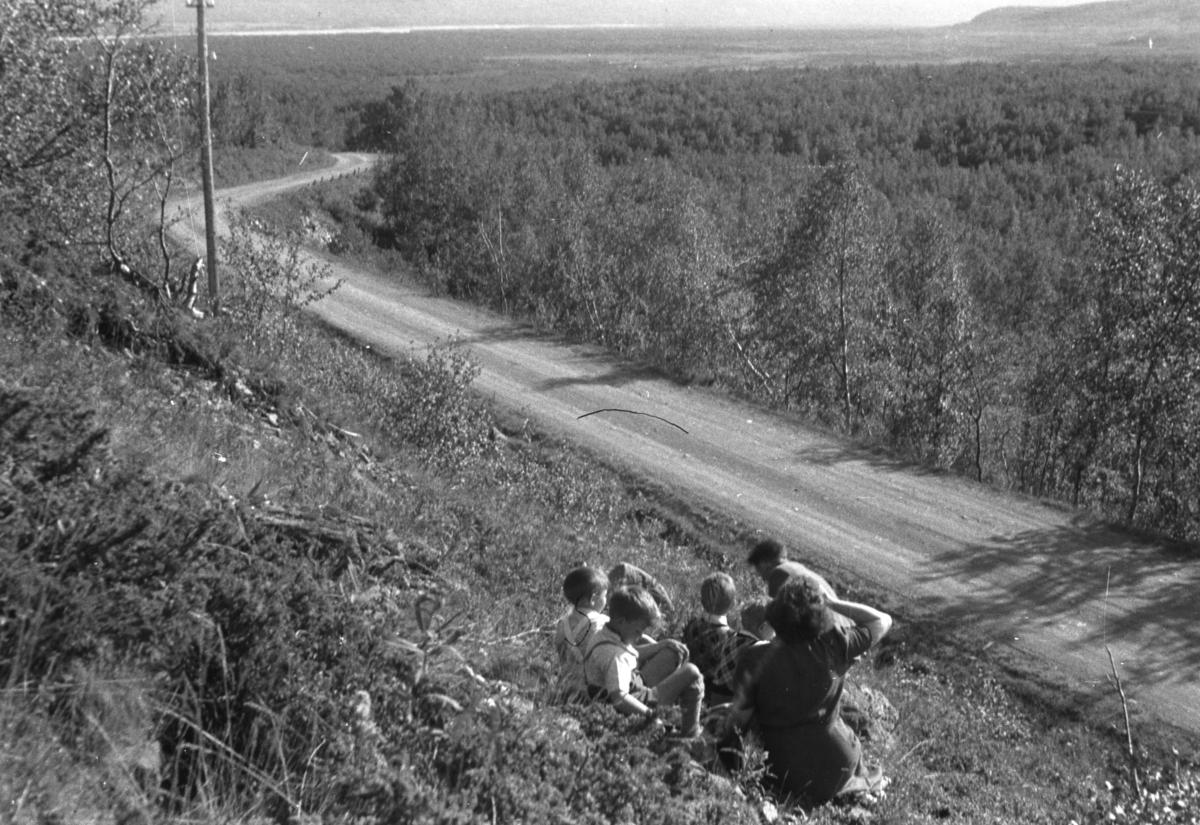 Flere personer sitter i skråningen ved en grusvei en sommerdag. Personer og sted er ukjent, men kan være i Tana-området.