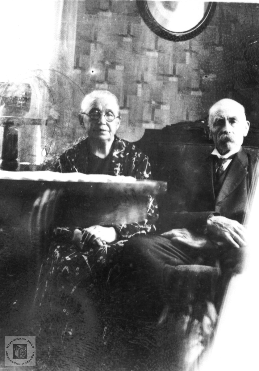 Portrett eldre par