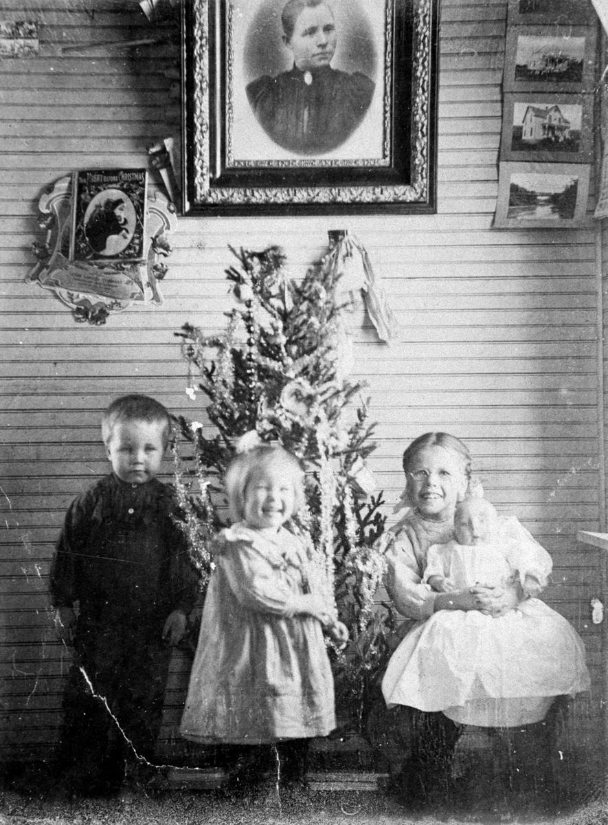 Amerikabilder, Per Mæhlum, Vallset. Gruppebilde, fire barn foran juletre. Foran fra venstre: Olav, Mildrid, Dagny, Anne sitter på Dagnys fang. Alle Mæhlum til etternavn. Vegg med bilder i bakgrunn. Katheryn, Nord-Dakota, USA, ca 1908.  Dette var første bilde som Per Mæhlum tok.