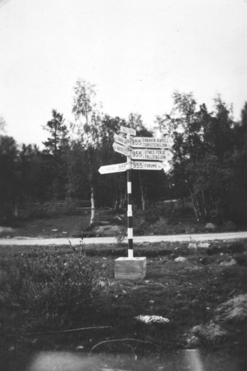 Dette er veikryss ved Skillebekk på Svanvik i Pasvik, i Sør-Varanger. På en stolpe er det mange skilt som viser vei til ulike steder.