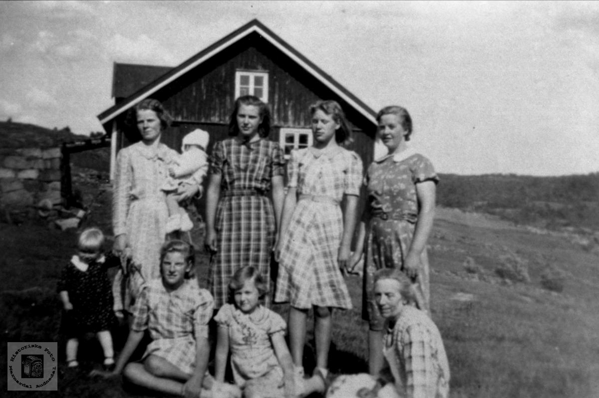 Kvinner. Skadden, Tisland.
