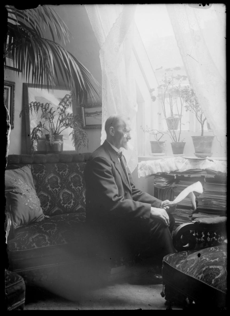 Andreas Lie hjemme i stua hos Grasmo. Han sitter ved vinduet. På vinduskarmen står fem potteplanter. Gardiner på vinduet.