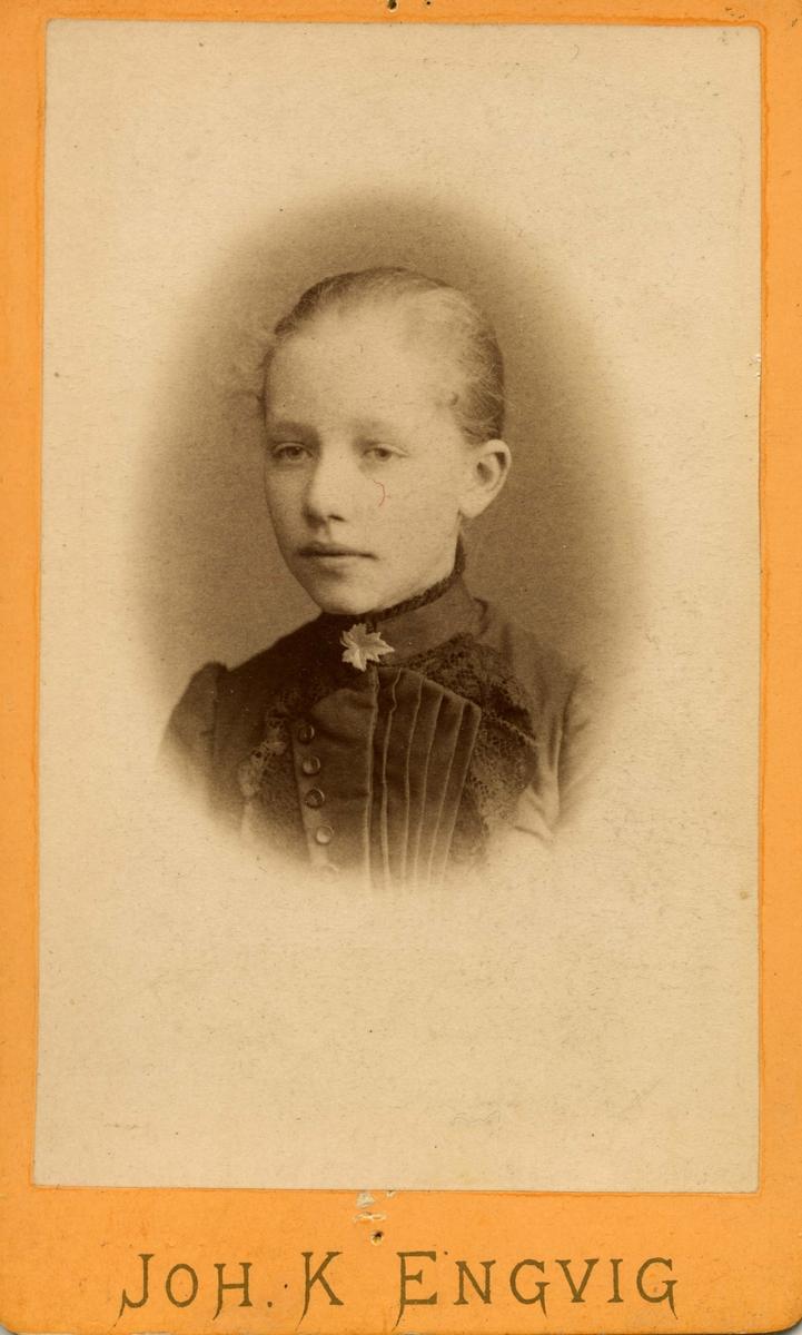 Portrett av Ida Hansine Borthen(1880-) fra Kristiansund. Bildet var sannsynligvis eid av fransk konsul i Vardø, Henrik Martin Borthen f. 1836 Frøya. Henrik Martins bror, Johan Ludvig Borthen, giftet seg inn i Marstrandfamilien i Kristiansund. Ida Hansine var datter av Ida Hansine Marstrand (1843-1906) og Johan Margido Borthen.   Bildet ble tatt vare på av fotograf Axel Borthen fra Vardø og Finmarksbiblioteket har sendere fått dette tilsendt fra en etterkommer av Borthen- familien, Terje Borthen, i 2011.
