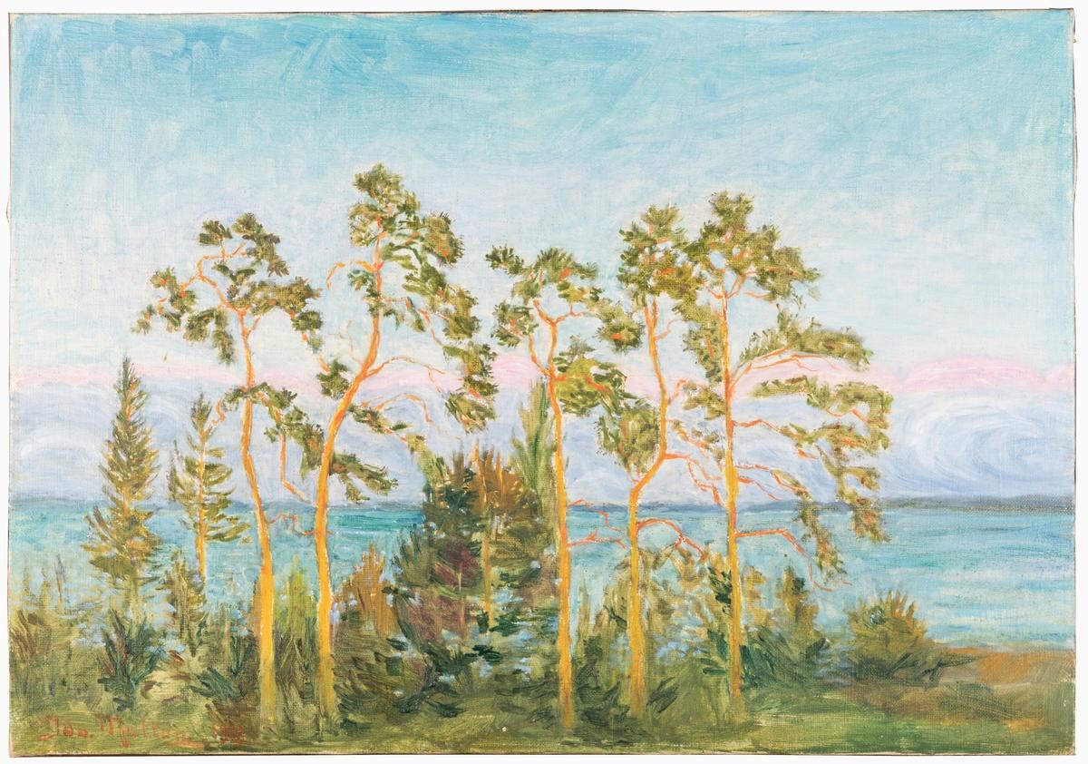 En dunge träd vid en sjö. Oramad.