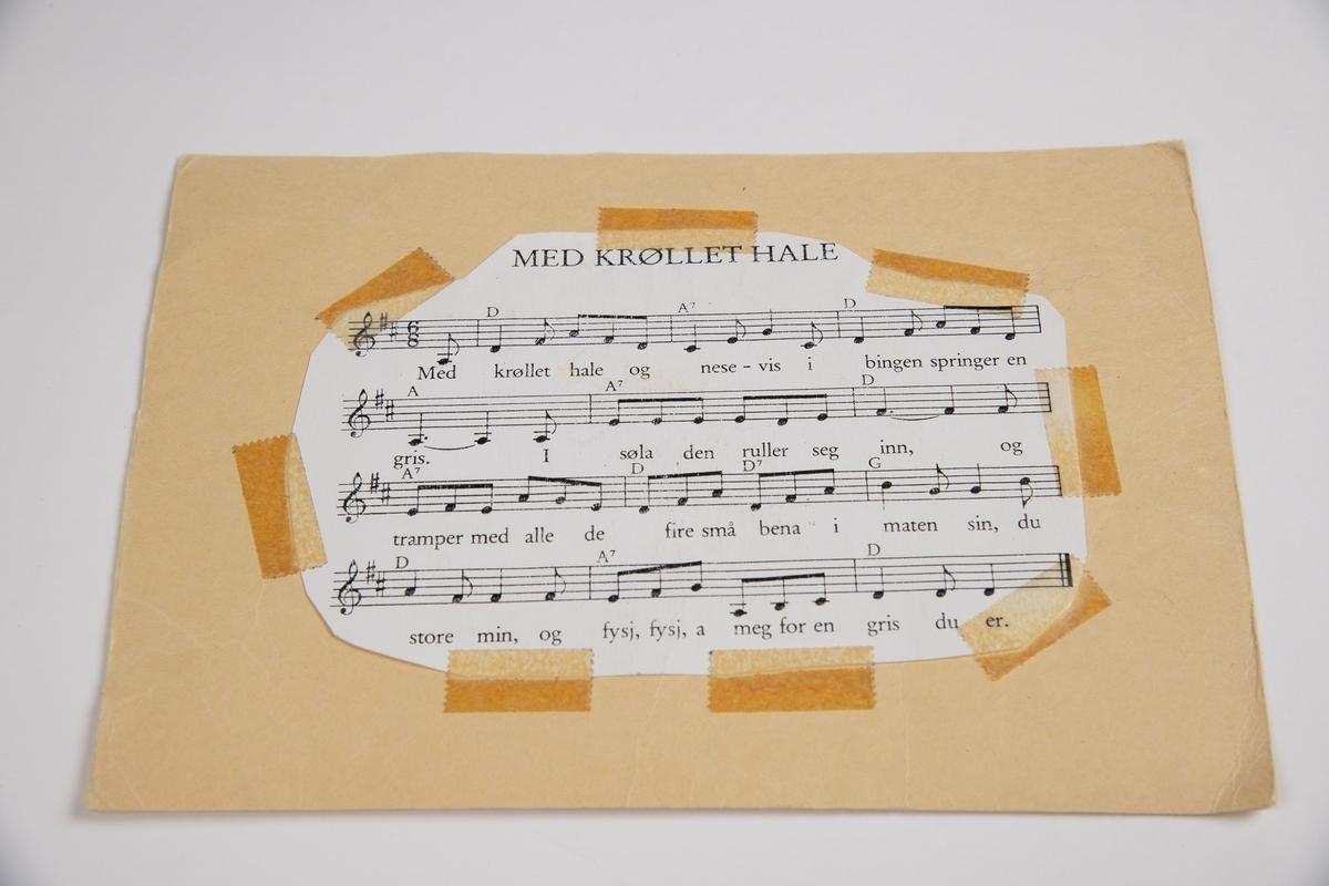 """13 forskjellige sangtekster. Alle sangtekstene er klippet ut av papir, og teipet på hvert sitt pappark. Noen av arkene er laminerte.  På forsiden av alle har de et bilde som illustrerer det sangen bakpå handler om.  Noen av arkene har også deler av teksten påført med penn.  Alle arkene er like store.  Sangene er:  1. Nå lager vi en sang 2. Står ingen sangtittel, men handler om en tordivel  3. Mikkel Rev  4. Nede på stasjonen  5. Ro, ro til fiskeskjær  6. Med krøllete hale 7. Erta berta sukkererta  8. Nøtteliten 9. Tusen plommer 10. Susanna har en kjole  11. Står ikke sangtittel, men handler om """"Kringlevider Bollesen""""  12. Vesle negerdukke  13. Står ingen sangtittel. Bilde av en symaskin under vann, med 4 fisker rundt seg."""