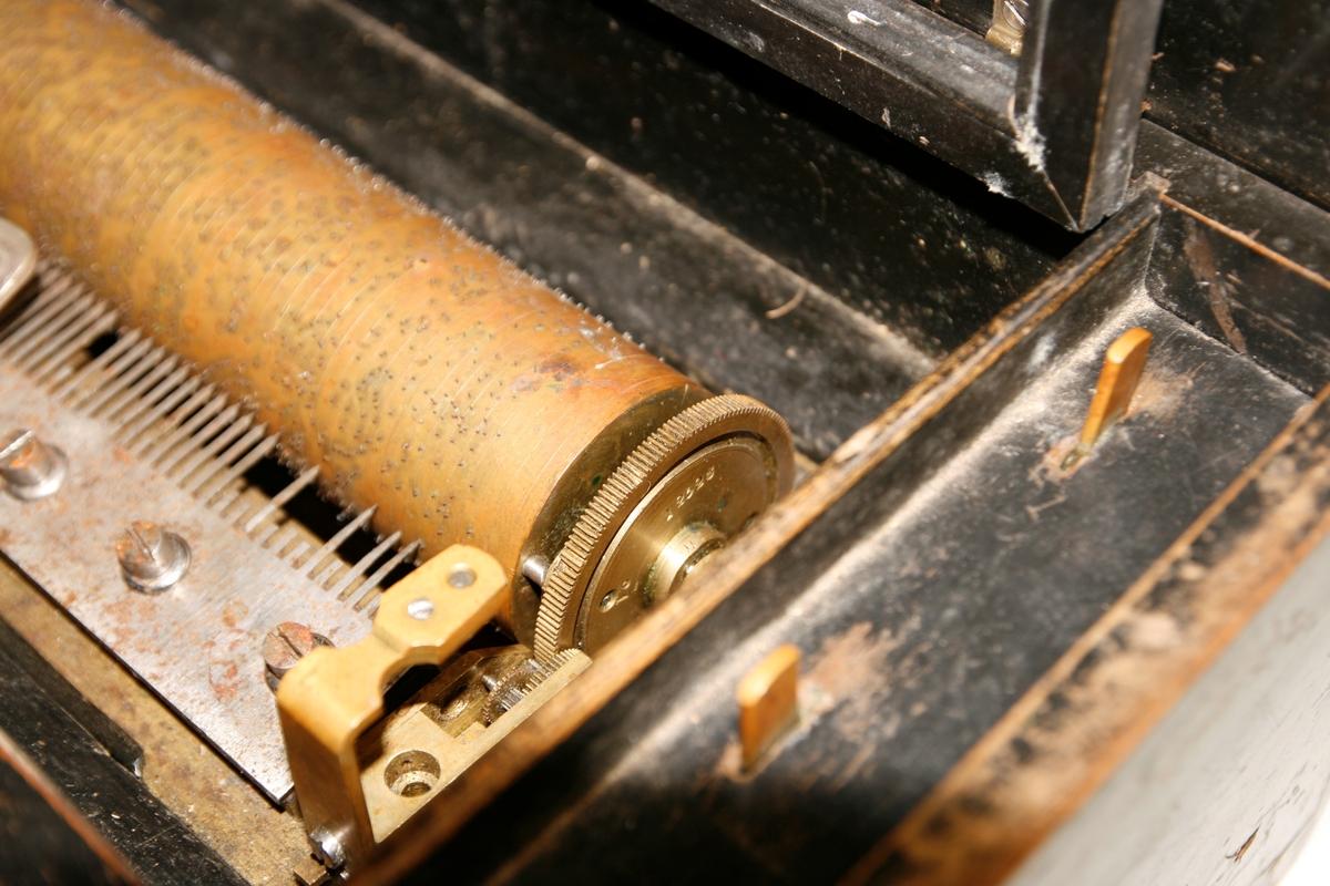 74 toner. 8 melodier.  Kasse i tre. Intarsia på lokk: blomsterdekor samt tre parallelle linjer (smal, bred, smal) som danner en ramme.  Messingssylinder og stålkam. Opptrekksmekanikk t.v. (mangler). Kammen er festet med 8 skruer til bunnplaten. Stjernehjul på sylinderens ende med 8 spisser (for 8 melodier). Vindbrems til høyre (vinger på brems mangler). To reglasjer t.h. for sylinder og mekanikk; den fremre for start/stop, den bakre for å skifte melodien eller repetere den. Modellen har et demperregister/sordin, ofte kalt «Zither»: en list presses mot tennene for å dempe dem noe og skape en strenge-liknende klang (mangler på dette eksemplar). Ble også kalt «Harpe».