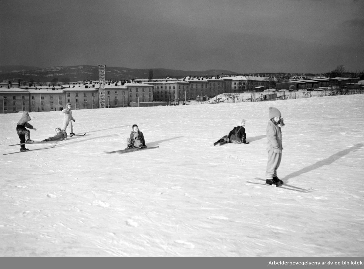 Framfylkingen. Oslo Framkrets skiskole i Torshovdalen 13 til 17 januar 1950.
