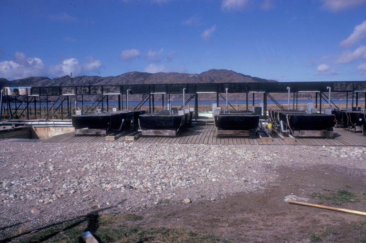 Settefiskkar og vannrør. Sjøen i bakgrunnen