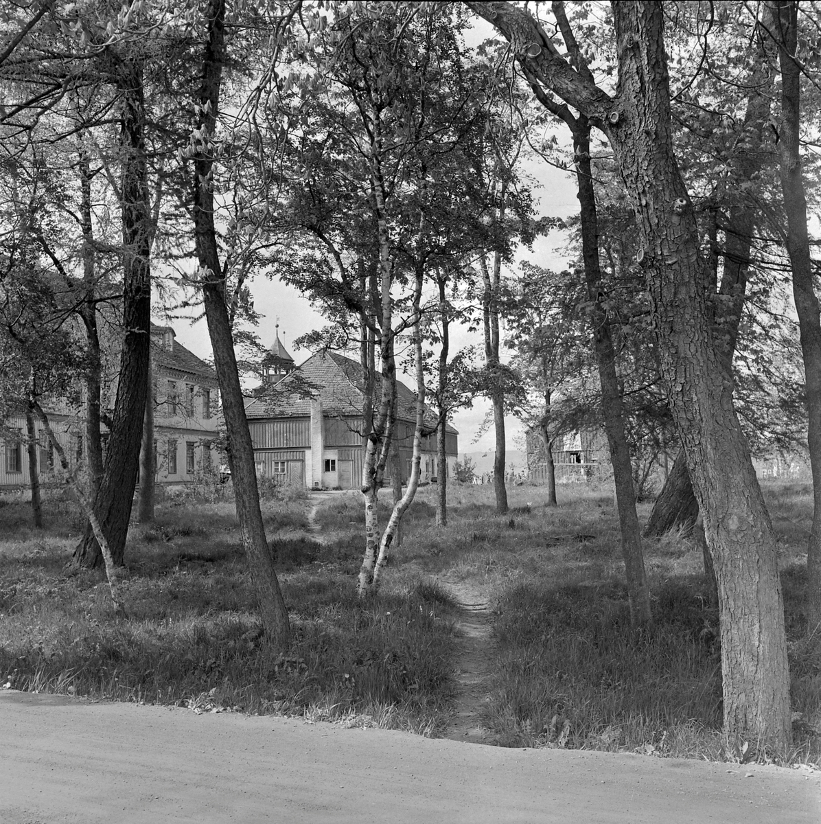 Lade gård, gårdsanlegg/skolebygning