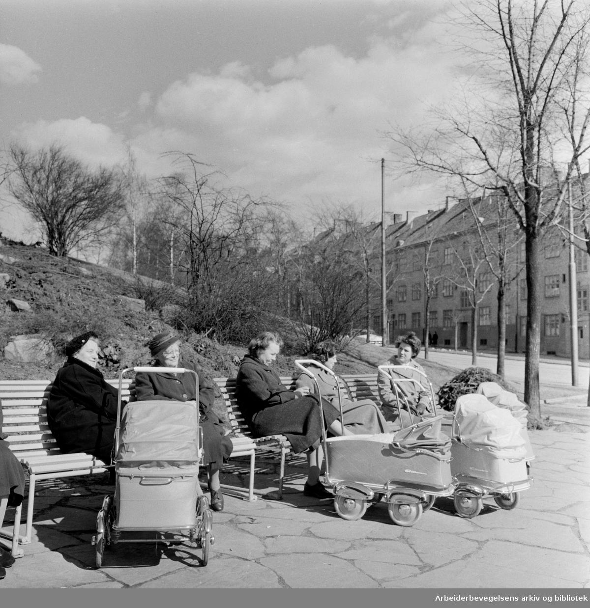 Vårstemning i Torshovparken. April 1958.