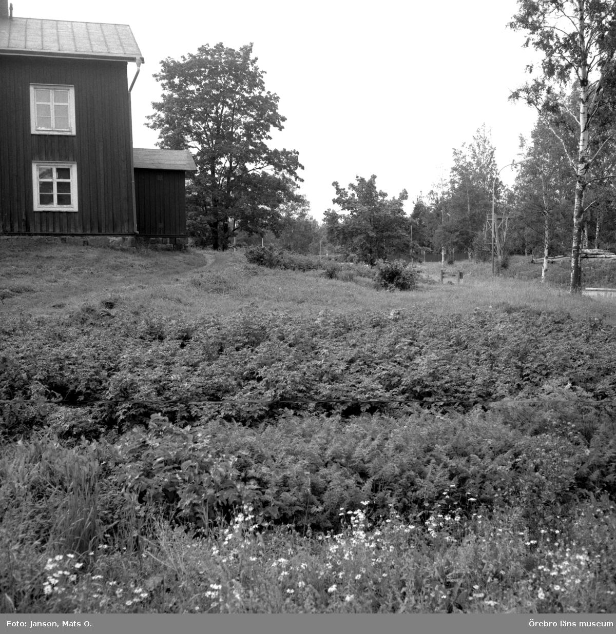 Boforsinventeringen, arbetarbostäder. Gråbo, Korpkullen.  Potatis- och grönsaksland tillhörigt hyresgästen Eriksson i hus 1003, östra gavellägenheten.