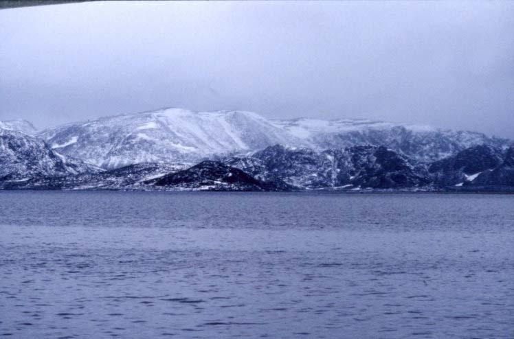Vasahalvöya, norra Spetsbergen.