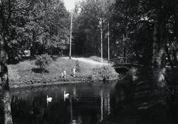 Hembygdsparken i Ljungby, ca 1946. Svandammen.