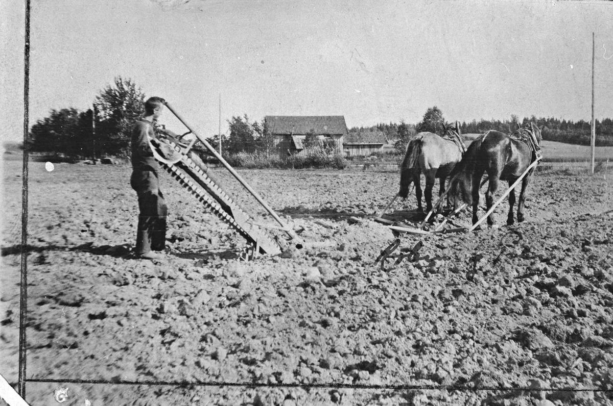 Grøfting, tospann med hester foran redskap som bonden styrer.