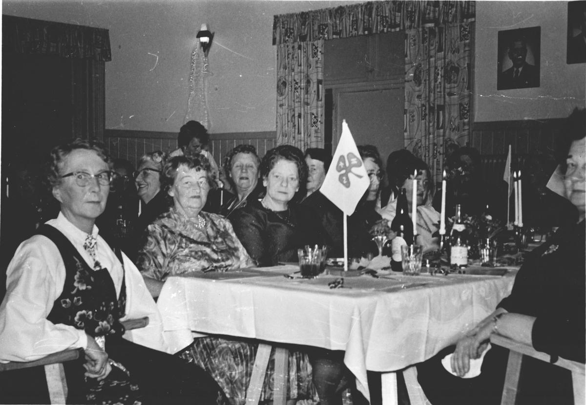 Oppegård sanitetsforening feirer 40 års jubileum
