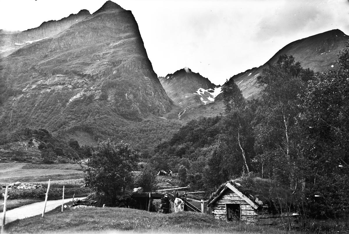 Fjell-/kulturlandskap.