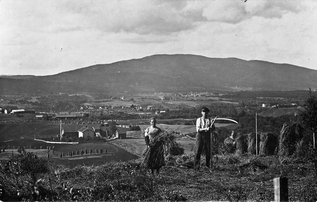 Utsikt mot Mistberget fra Skakkland. Røkholt til venstre og Måe gård til høyre.