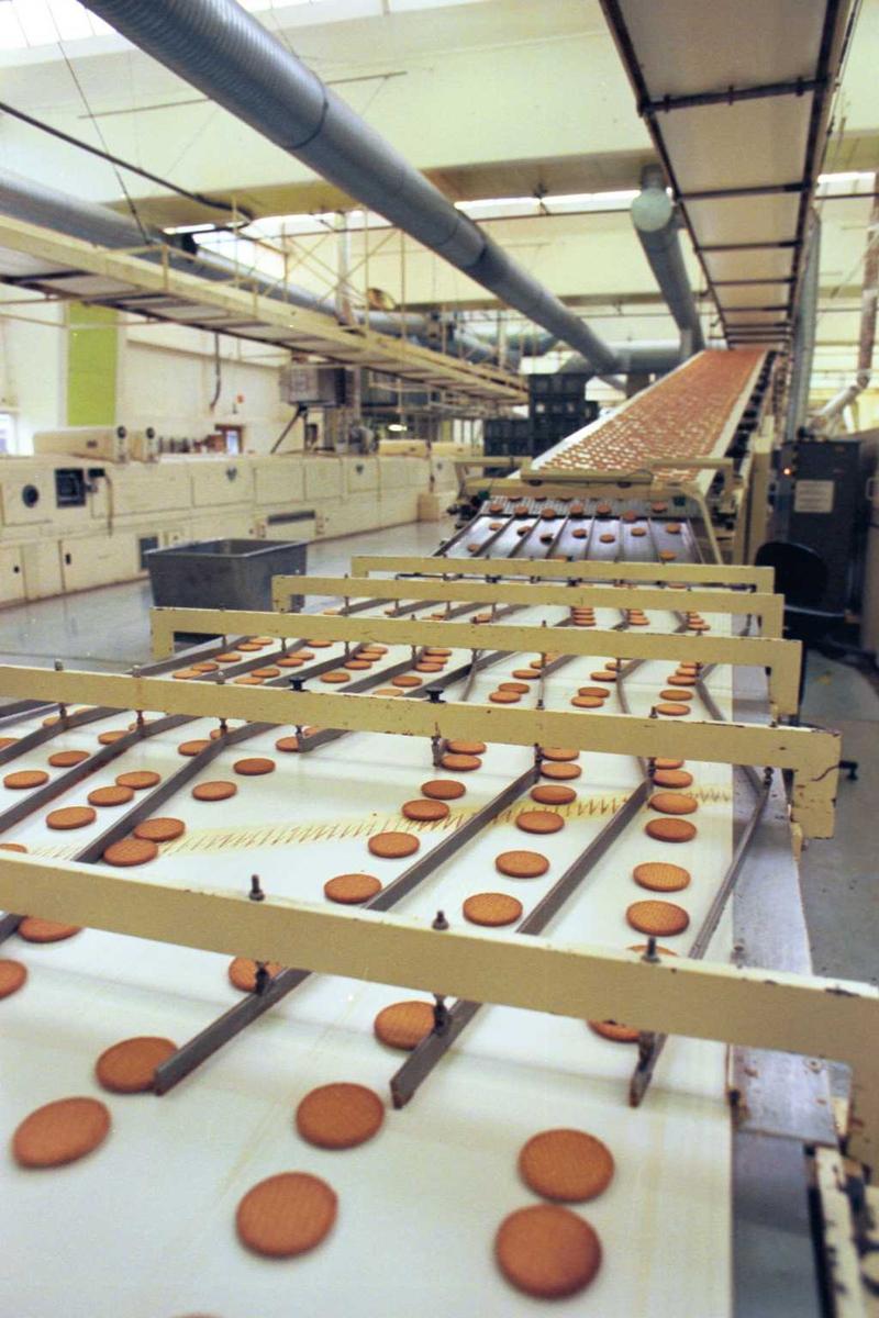 Maskiner, Gjendekjeks, fabrikkmiljø. Kjeks på veg fra kjølebåndet til stacker.