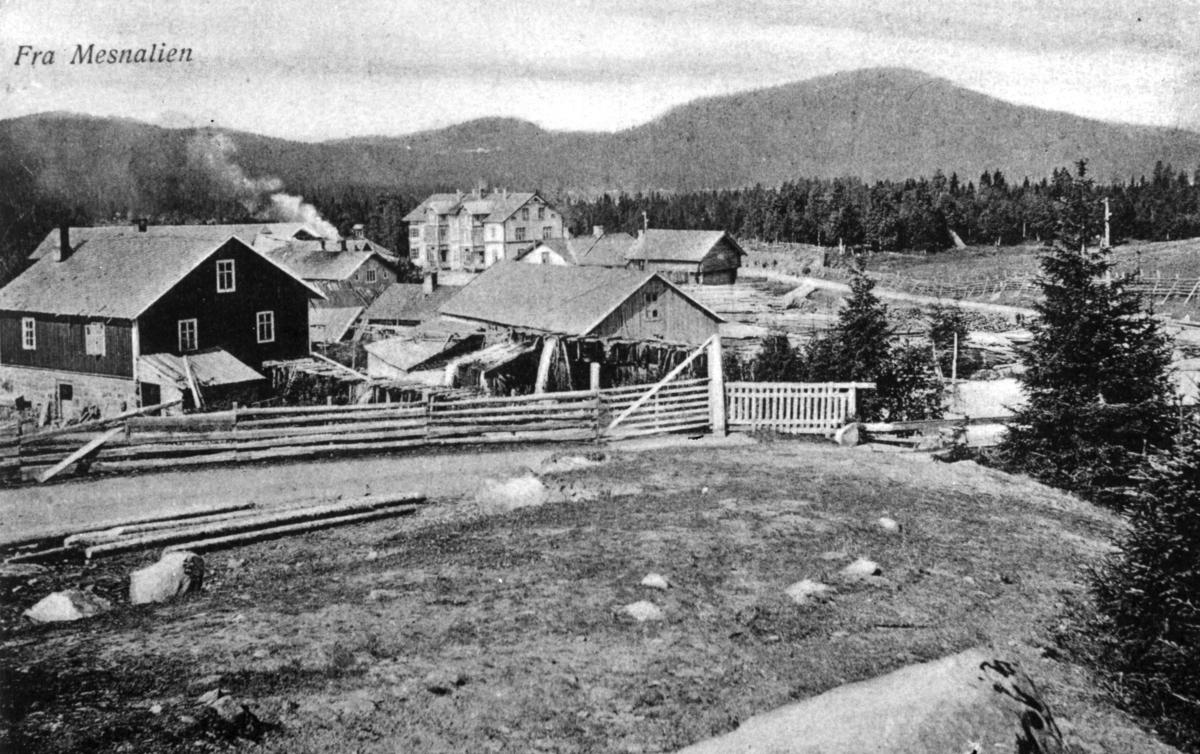 Mesnalia, sagbruk, postkort, ca. 1910-15.