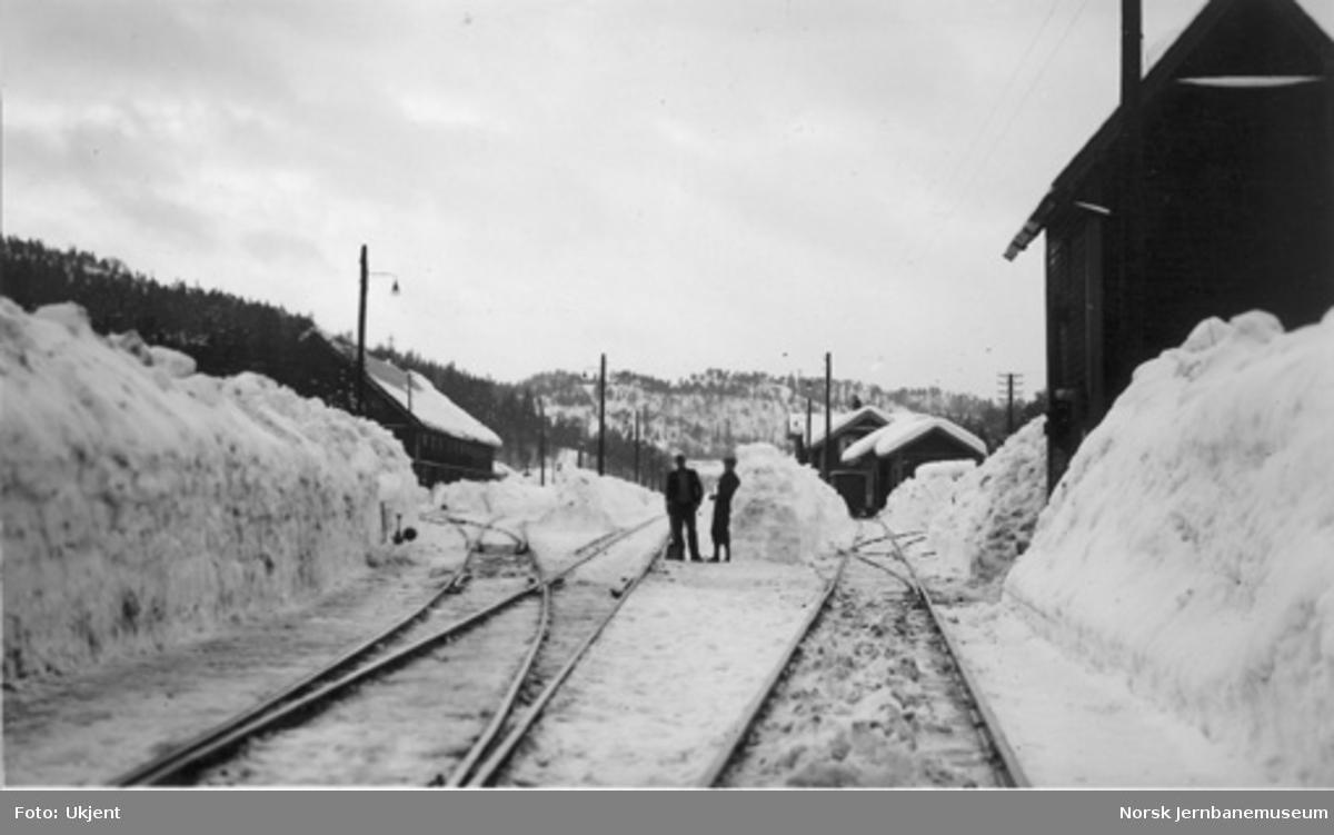 Vikeland (Vennesla) stasjon med store snømasser
