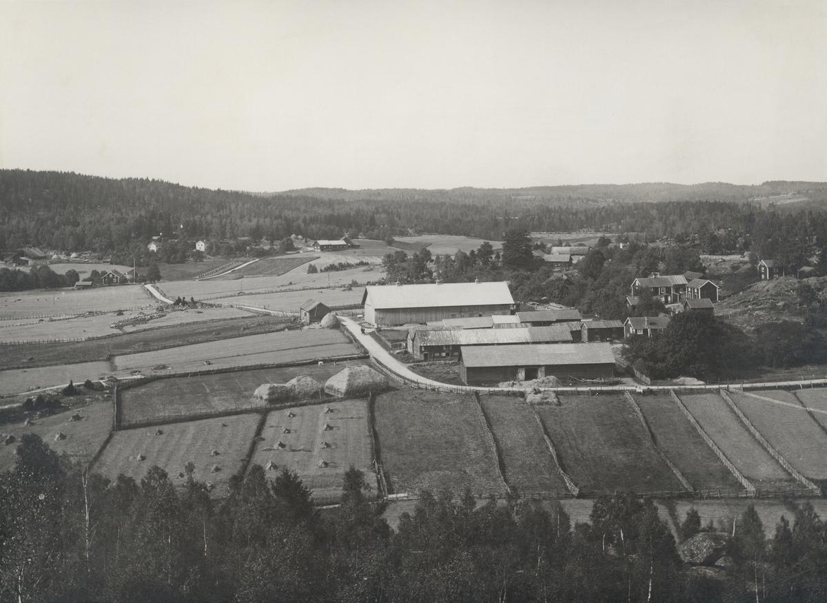 Östergötland. Kinda hd. V. Eneby sn. Näsby by. Näsby oskiftade by sedd från Hammarkullen. Foto Joh. E. Thorin 1898.