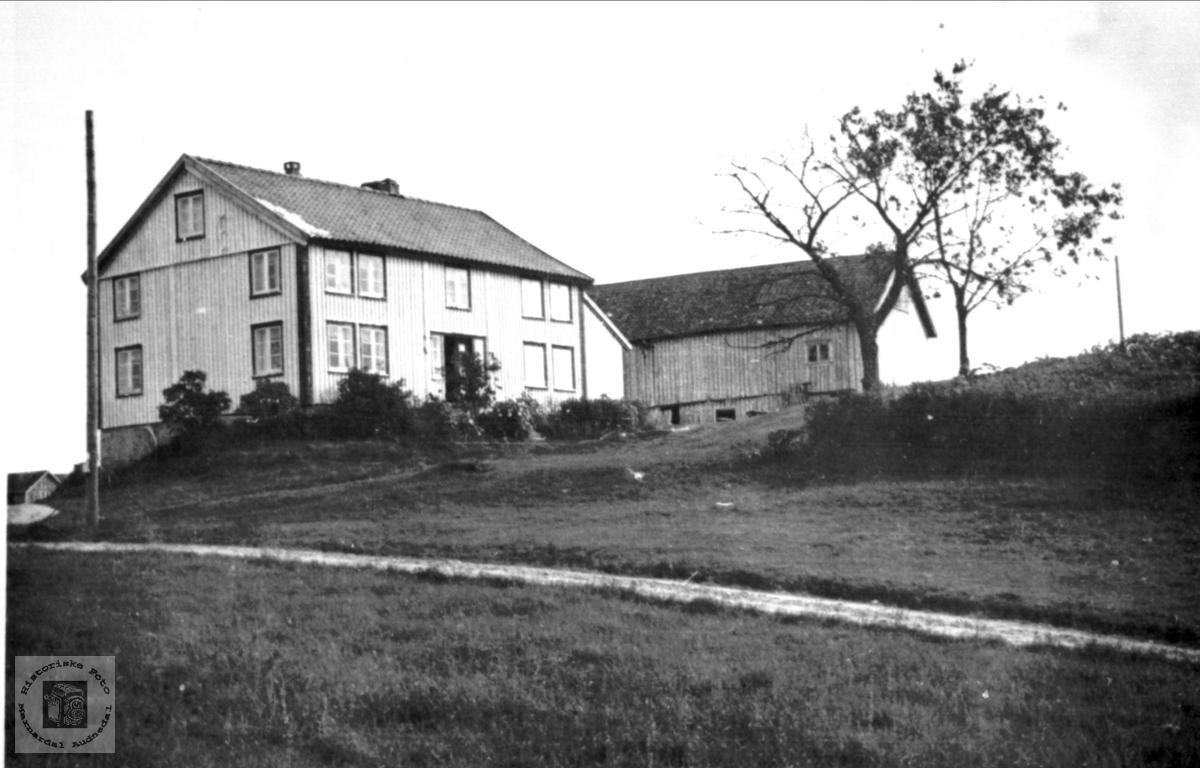"""Garden """"Der oppe"""" på øvre Abelseth, Bjelland."""
