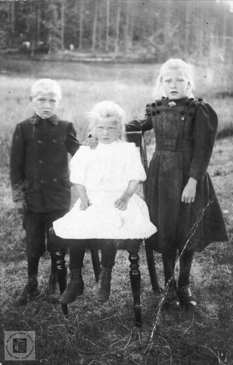 Portrett av Torvald, Anna og Thora Sølvskar, Bjelland.
