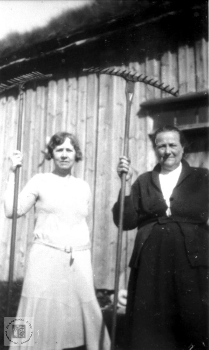 Klar med riva i Bjenndalen, Røynesdal i Bjelland.