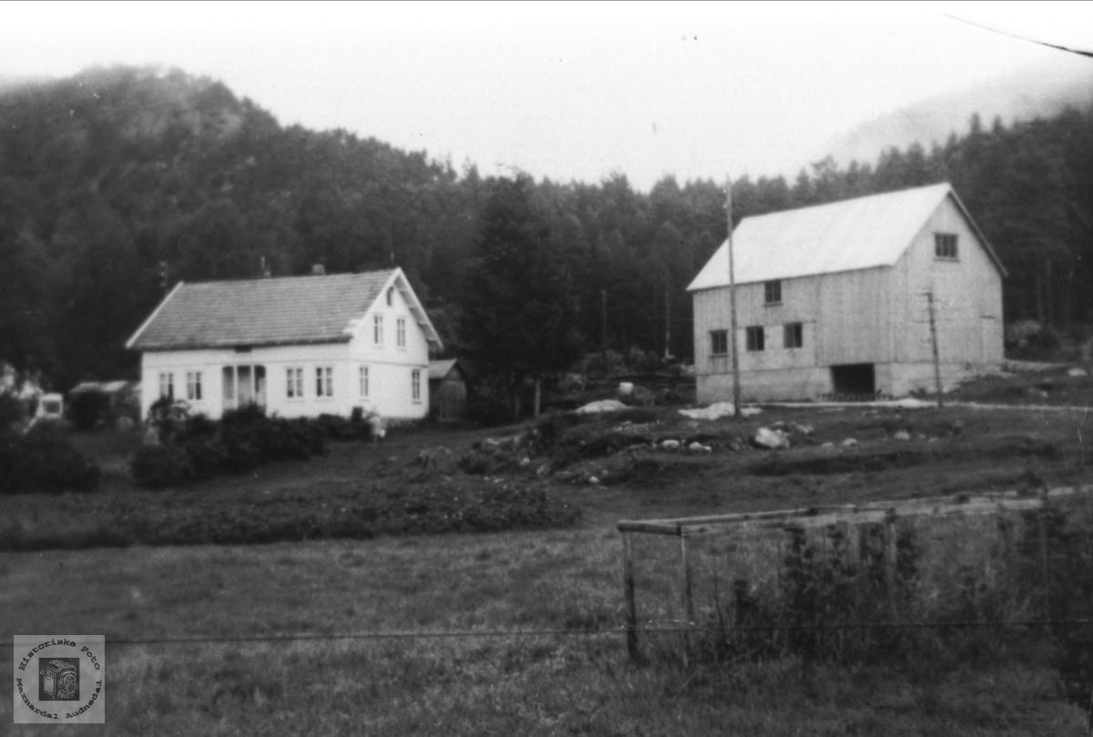 Gardsbruk. Stedjan, Bjelland.